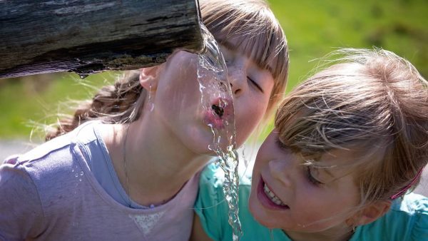 Pravilan unos tecnosti i vode u organizam